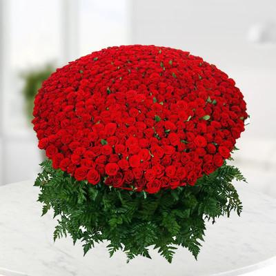 1000 Roses Bunch V