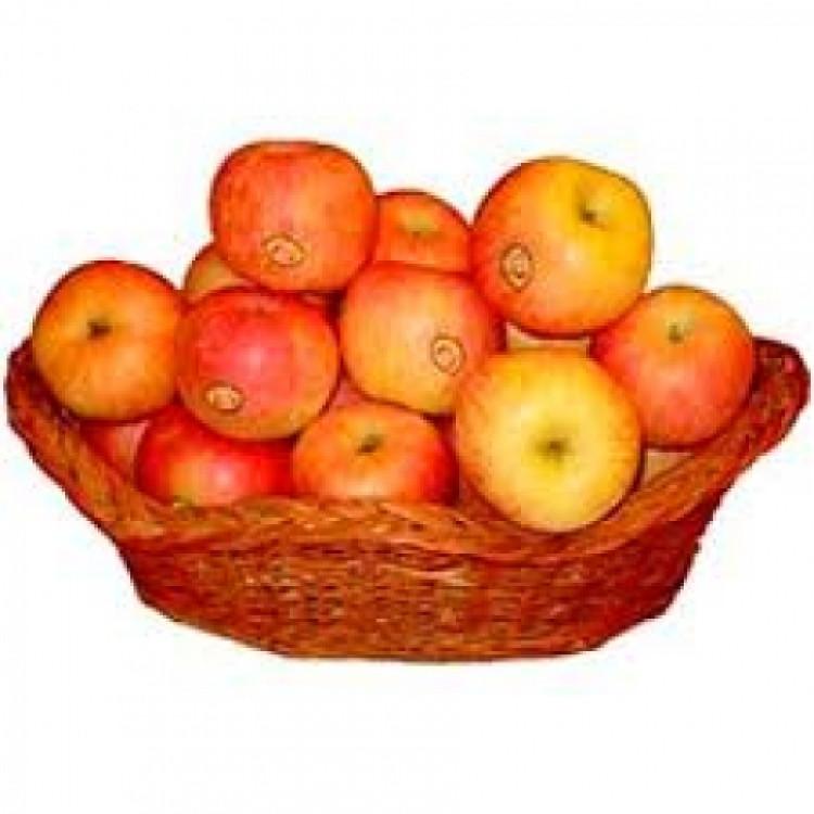 5 kg Apples