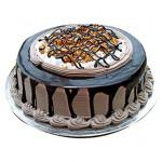 Chocolate Nova Cake