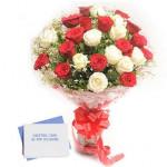 Red N White Roses